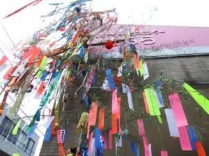 kirara-tanabata